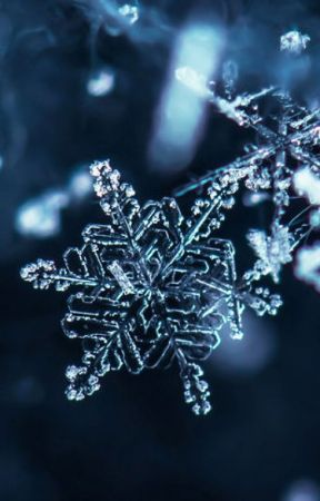 Snowflake (Complete Song Lyrics) by eric_and_tessa