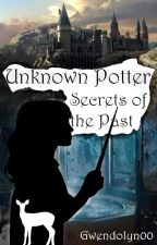 Unknown Potter I - Secrets of the Past by Gwendolyn00