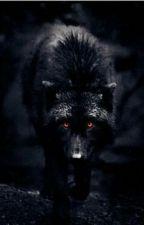 mi lobo negro como la oscuridad by PattyCares
