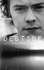 Destine (vf) - h.s  {Suite de Chosen} by CatchDreamer