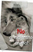 la crueldad de los hombres hacia los animales by CFTH910