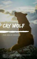 Cry Wolf- Scott McCall Y Tu by suhtorii_lid