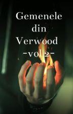 Gemenele din Verwood Volumul 2 by DianaPopescu4