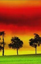 o reggae by didrewbieber