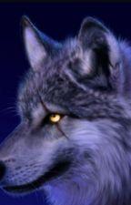 My werewolf mate  by Warriorcatslover9909