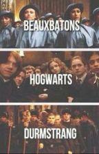 (tn) ¿Beauxbatons o Hogwarts?, T3 by nataliieesk