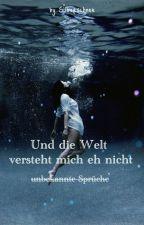 Und die Welt versteht mich eh nicht (unbekannte Sprüche) by Silberschnee