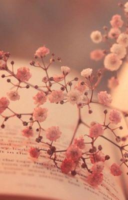 [Shortfic] [SA] Người anh câm| Hunhan| Shimyoungmin (chap 1)