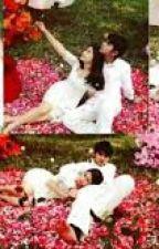 Wedding Was Accidentally by Manda_Angel
