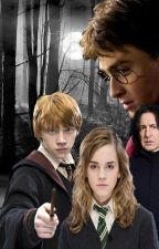 Facts Why You Love Harry Potter by aanngiela