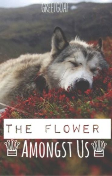 The Flower Amongst Us (ON HOLD)