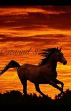 Ostwind 3 by Stanzilove
