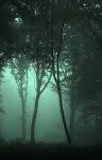 Az erdő titka(Befejezett) by Kittyke12