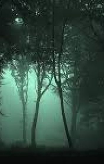 Az erdő titka(Befejezett)