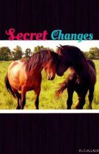 Secret Changes by SkayaM