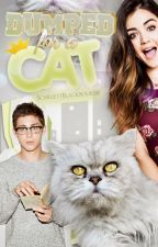 Dumped For a Cat by LeChatKie