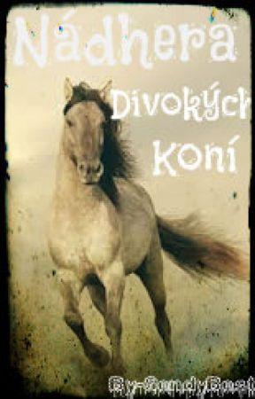 Nádhera divokých koní by SendyBest