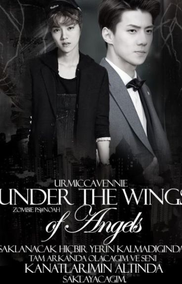 Under The Wings of Angels
