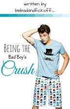 Being the Bad Boy's Crush by bebadandfckoff_