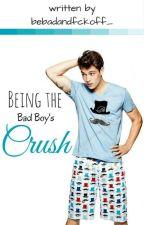 Being the Bad Boy's Crush by bebadandfckoff_