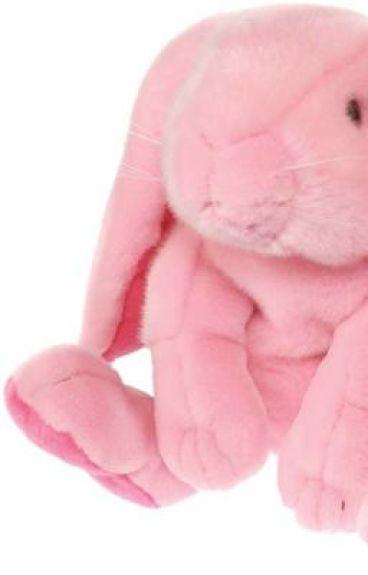 My Bunny Eared (Boy)Friend