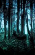 Into the woods  by alexawhitewoods