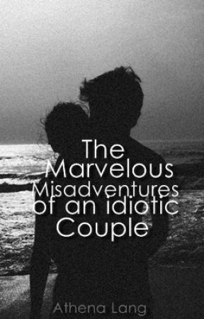 The Marvelous Misadventures of an Idiotic Couple by Aesthylum
