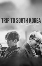 ||TRIP TO SOUTH KOREA|| BTS FANFIC by Kim_sureyya