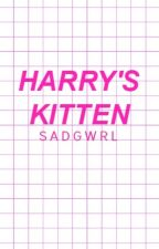Harry's kitten ‹daddykink› 1. by sadgwrl