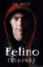 Felino [Sterek] by Lu_Wolf