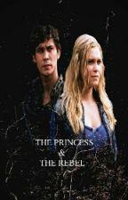 The Princess And The Rebel  by Marina-Blake
