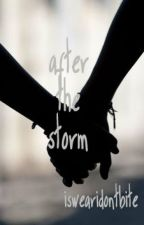 After The Storm by iswearidontbite