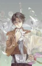 I'll See You Later (Levi X Reader) by amberwolf89
