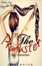 The Prankster (Marauders Era Harry Potter) by awakeninq