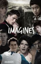 IMAGINES • TW• TMR  [ En Réécriture] by 22liseuses