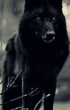 BlackWolf by _Dawn_Rising_