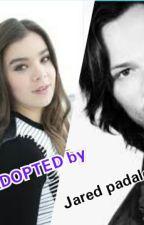 Adopted By Jared Padalecki by curlyfriesj