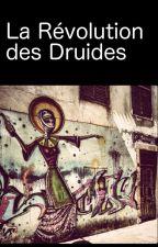 La révolution des Druides by CedricCitharel