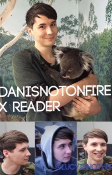 Danisnotonfire x Reader
