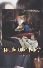 """""""No, the Other Potter."""" by funnygirl12312"""