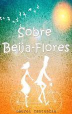 Sobre Beija-flores by laurelcantu