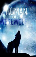 Human or Werewolf? (sequel to An Angel and a Werewolf) by aw4653