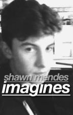 shawn mendes imagines by groovyymendes