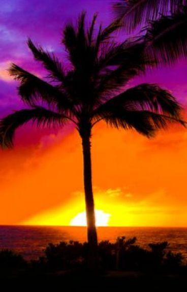 Beautiful Haiti by daintyduddlydolphin