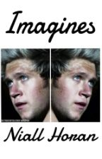 Imagines Niall Horan by ImagineToiOneD