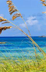 Breeze by PearlOfTheSea