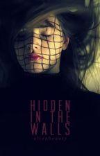 Hidden in the Walls by alienbeauty