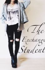The Exchange Student ( Luke Hemmings FF ) WIRD ÜBERARBEITET by sternenhimmeltage