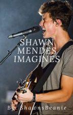 Shawn Mendes Imagines by ShawnsBeanie