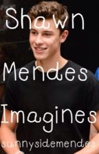 Shawn Mendes Imagines by sunnysidemendes